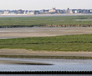 Saint Valery (Somme Bay): best time to go