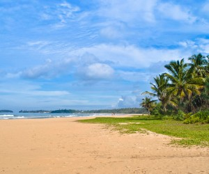Bentota: best time to go
