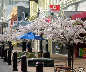 Invercargill: best time to go