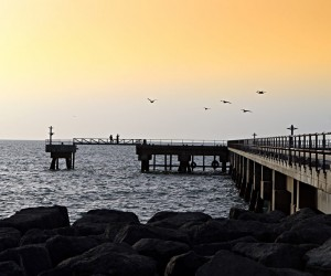 Masirah: best time to go