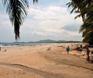 Tamarindo: best time to go