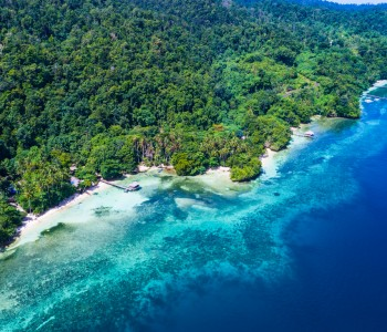 Indonesian Papua