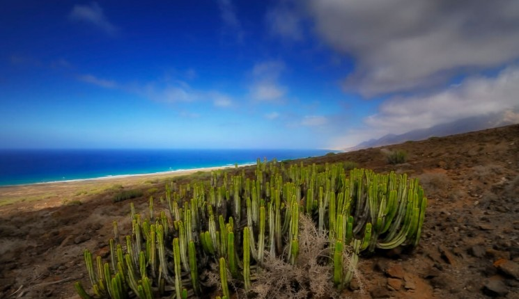 Canary Islands : Cofete - Explore thanks