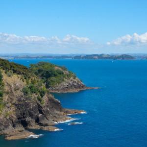 New Zealand / 480