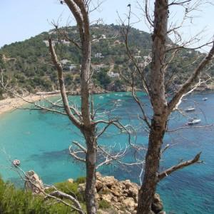 Ibiza / 2420