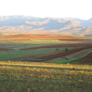 Lesotho / 2230