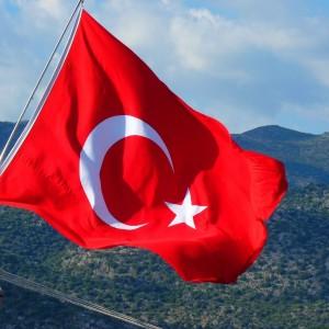 Turkey / 1180